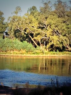 @jwboxing01 An Arvo on the Murrumbidgee - #WiradjuriCountry @IndigenousX Wagga Wagga, http://www.bloggerme.com.au/states/mia Australia