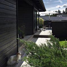 Lots of photos from our terrace up on stylizimoblog outdoorliving uterom uteplassen terrasse hageinspirasjon stylizimohouseoutdoors