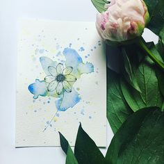 Hello lovlies! Enjoy your Saturday and this blue flower! 🦋 Take care and lots of love, Pia x 💙 . . . . . #watercolor #watercolors #watercolorpainting #watercolorart #penandwash #watercolorillustration #watercolorartist #watercolor_art #watercolorsketch #inkandwatercolor #watercolorist #watercolordrawing #watercolor_daily #watercolor_guide #watercolordaily #watercolorflorals #watercolor_blog #watercolour #watercolours #watercolourpainting #watercolourart #watercolouring #watercoloursketch… Watercolor Drawing, Watercolor Illustration, Floral Watercolor, Pen And Wash, Watercolours, Blue Flowers, Blog, Instagram, Watercolour Illustration