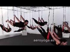 yogacreativo.com: Yoga Aereo © Mexico: Fechas Cursos Profesores AeroYoga ® International
