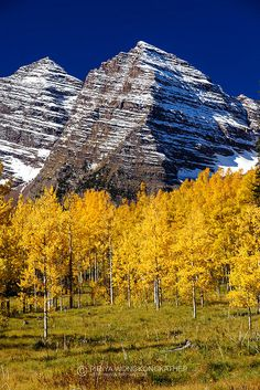 Fall in Maroon Bells, Aspen, Colorado