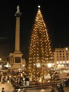 UK | Christmas in Trafalgar Square, London