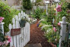 Garden of Theresa Loe  of Growing A Greener World, and Living Homegrown® blog.
