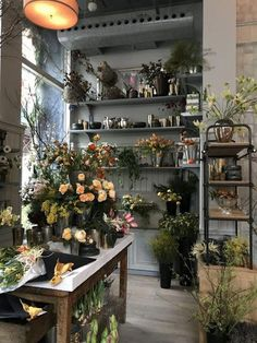 roman and williams guild Flower Shop Decor, Flower Shop Design, Flower Shops, Interior Design Colleges, Commercial Interior Design, Flower Shop Interiors, Roman And Williams, Flower Studio, French Chic