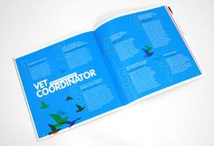 Velg Training // logo design, brand identity, stationery, brochure design