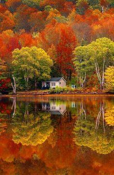 🍀🌿🐯🍌🥀🌩😘☮️⛩🤹🏾♂️🐰👲🏻🚜🗼🤷🏻♂️✝️ Colours of Cape Breton, Canada 🤩 Photo by 🦅🐀🙊🍇😊🚝☪️🌄🗾🖨🐋👮🏻♀️🐥🤷🏻♀️🥪🏒 Beautiful World, Beautiful Places, Beautiful Pictures, Beautiful Sky, Animals Beautiful, Autumn Scenes, Fall Pictures, Autumn Photography, Sunset Photography