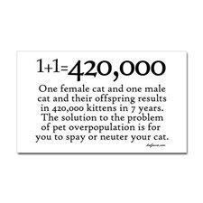420,000 Cat Overpopulation Rectangle Sticker