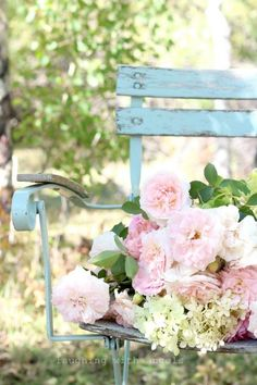 My garden bench adorned with my lovely roses......