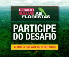 Participe do Desafio. Ajude a salvar as florestas.