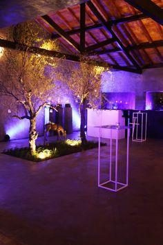 Estufa Colares - Wedding Venue   Sintra   Destination Wedding   Portugal   Decoration   Catering Companies   DCV Events & Catering