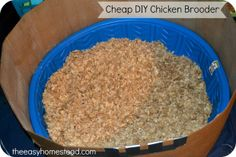 Cheap DIY Chicken Brooder - The Easy Homestead