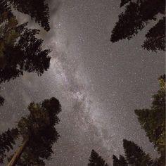 feelin small. feelin good but feelin small.    #aliens #galaxy #milkyway #earth #instagood #heatercentral #theimaged #night #astrophotography #longexposure #longexposurephotography #camp #hike #backpack #backpacking #theoutbound @theoutbound #nature #naturephotography #longexpoelite #conquer_ca #outdoors #create #createexplore #createcommune #feedbacknation #canon #canonphotography #natgeoyourshot #natgeotravel #natgeo