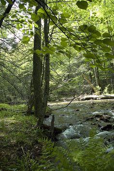 Pennsylvania's 7 Wonders of the World