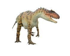 List of Meat Eating Dinosaurs | Dinosaurs Pictures and Facts