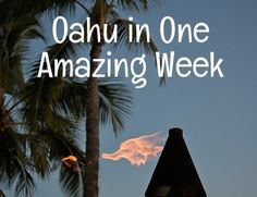 Suggestions for a seven-day Oahu vacation itinerary | Go Visit Hawaii