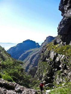 Table mountain, Cape Town...hikers paradise!!