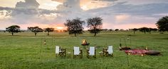Singita helps you find the perfect travel experience in South Africa, Tanzania and Zimbabwe. Green Landscape, Going On Holiday, African Safari, Tent Camping, Glamping, Happy Weekend, Tanzania, Travel Style, Wilderness