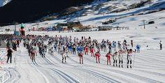 . Este fin de semana Baqueira Beret acoge la 37ª edición de la Marxa Beret y el Campeonato de Europa de Esquí Nórdico, que esperan congregar a 1.500 deportistas procedentes de todo el mundo. Es un ...