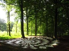 Land art, mandala made in a forest in belgium, 22 meters large