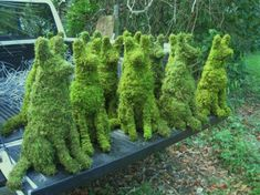 Because you know you NEED the WHOLE pack!!! - - - German Shepherd Topiary Garden Sculptures -