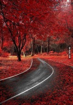 Red fall in Spain. Wow.
