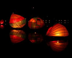 Luminara Lantern Festival in Victoria, BC.