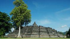 Yogyakarta, Indonesia Transportation, Louvre, Building, Travel, Viajes, Buildings, Destinations, Traveling, Trips