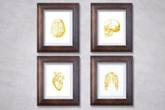 Anatomy Art Print Set - Best Seller - Medical Student Gift - Anatomy Decor - Real Gold Foil - Medical Art - Heart Anatomy - Skull Anatomy
