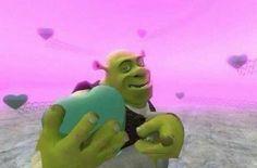 New memes funny crush guys ideas Memes Shrek, Memes Humor, Memes Estúpidos, Stupid Memes, Best Memes, Funny Memes, Funny Fails, Memes Lindos, Cute Love Memes