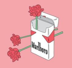 Shared by MerySoria. Find images and videos about rose, cigarette and marlboro on We Heart It - the app to get lost in what you love.