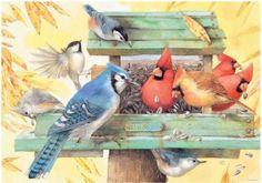 MARJOLEIN BASTIN (born 1943 in Loenen aan de Vecht) is a Dutch noted nature artist, writer, children's author and illustrator. Marjolein Bastin, Nature Sketch, Nature Artists, Illustration Art, Illustrations, Dutch Artists, Watercolor Bird, Watercolor Artist, Bird Art