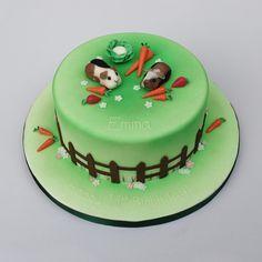 Cake Decorating Northampton Community