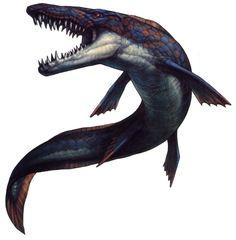 Mosasaurus; Late Cretaceous (70 - 66 Ma); Squamata (mosasauridae); Discovered by Conybeare, 1822