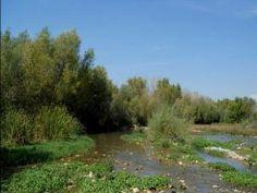 Ríbera Río Cinca