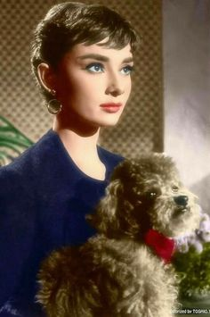 "Audrey como ""Sabrina"", 1954 Audrey as ""Sabrina"", 1954 Audrey Hapburn, Audrey Hepburn Mode, Audrey Hepburn Photos, Katharine Hepburn, Audrey Hepburn Bangs, Classic Hollywood, Old Hollywood, Actrices Hollywood, British Actresses"