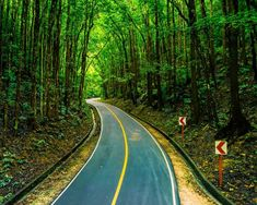 Bilar Man-Made Forest Bohol Philippines, Cute Wallpapers, Country Roads, Adventure, Places, Pretty Phone Backgrounds, Adventure Movies, Adventure Books, Lugares