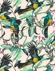 A Side Project   JUL   Birdlife   Colourway 1 © Shelley Steer