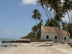 Praia de Carneiros -PE - Brasil