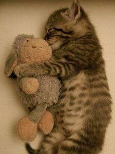 just sooo cute