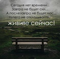 40 красивых цитат со смыслом о том как достичь счастья Brainy Quotes, Motivational Quotes, Inspirational Quotes, Some Quotes, Great Quotes, Destin, Life Motivation, True Words, Self Development