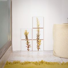 print on ceramic tiles#packaging #sponte collection #ceramic tiles #tiles  #plants #interior design #design #arredamento #livorno #italy