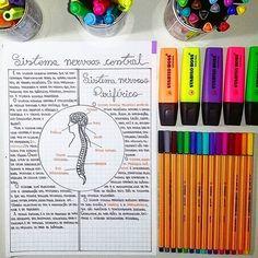 Cantinho @calourodemedicina ���� . #student #studygram #studyhard #studying #vidadeconcurseira #estudaquepassa #concurfriends #lawstudent #med #medlove #students #alokadapapelaria #papelaria #aloucadapapelaria #homeoffice #meucantinhodeestudo http://butimag.com/ipost/1554660291866190239/?code=BWTQ0xrFuGf