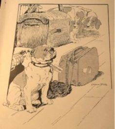 Vernon Stokes bulldog illustration