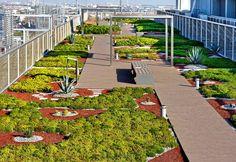 Los techos verdes se instalan en las principales urbes del mundo