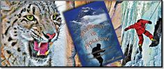 """Everest is Hollow - Illustrated"" is an action thriller. It stars a teenage boy, nicknamed ""Trouble."" Tablet owners can tap ""Everest is Hollow's"" color illustrations and bring them alive with multi-media content. You see the real world behind Trouble's adventures. Interesting facts are revealed. Learn why Nepal is amazing—and what makes airplanes fly. Want to know how computer chips are made? We'll show you. Visit the ""Everest is Hollow"" Learning Center at SiliconValleyNovel.com"
