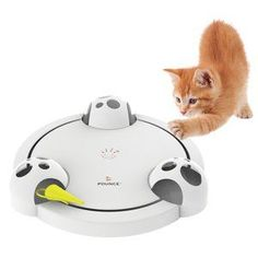 The Frolicat Pounce Interactive Toy is an automatic, rotating, hide-and-seek cat toy. Marshal Maus is an electronic mouse who zips around the circular path, zooming forward, reversing direction, hidin