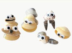Outer Banks Beach Craft - seashell critters