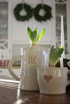 hyacinth in a heart jug!