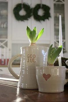 hyacinth in a heart jug!