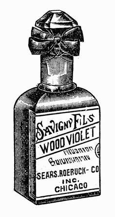 Sisters' Warehouse: Illustrazioni Vintage in Bianco e Nero Bottiglie Preziose - Vintage Illustrations in Black and White Precious Bottles